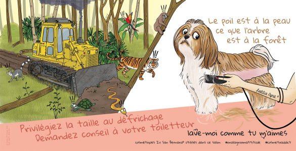 groom attitude_Laetitia aynié illustrations