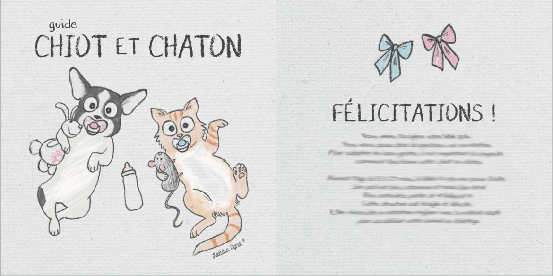 guide chiot et chaton , illustrations laetitia aynié ,société groom attitude