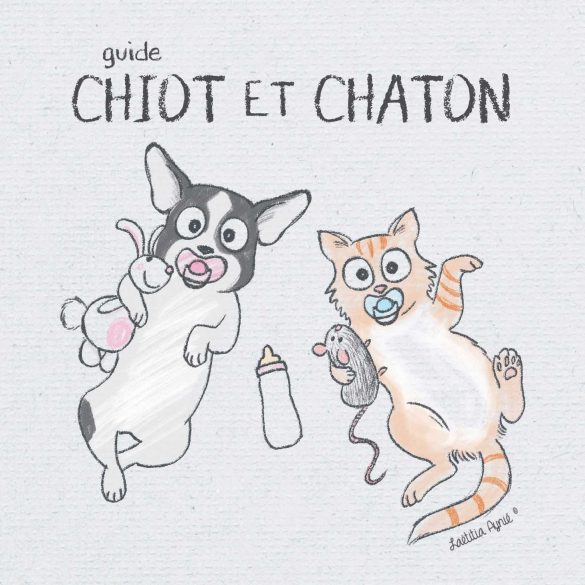 couverture guide chiot et chaton , illustrations laetitia aynié ,société groom attitude